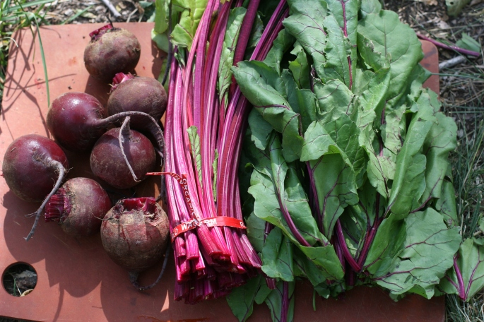 trimmed beets