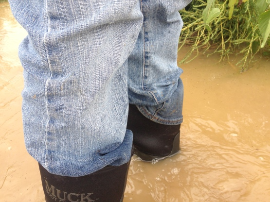 Boots in flood waters