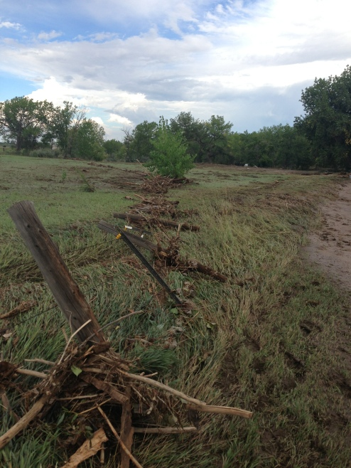 Debris on Bishop property
