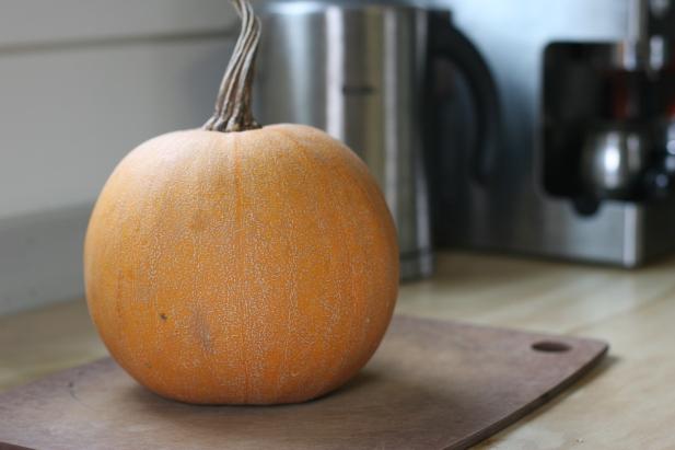 winter luxury pumpkin
