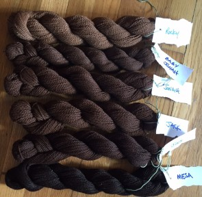 Skeins of Alpaca Yarn