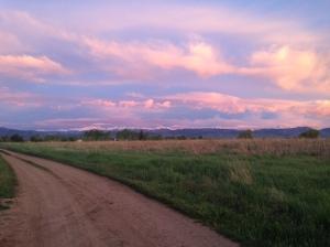 Sunrise at the Farm Friday 5/20/16