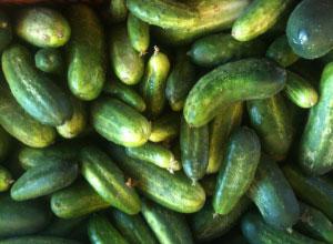recipes_cucumbers