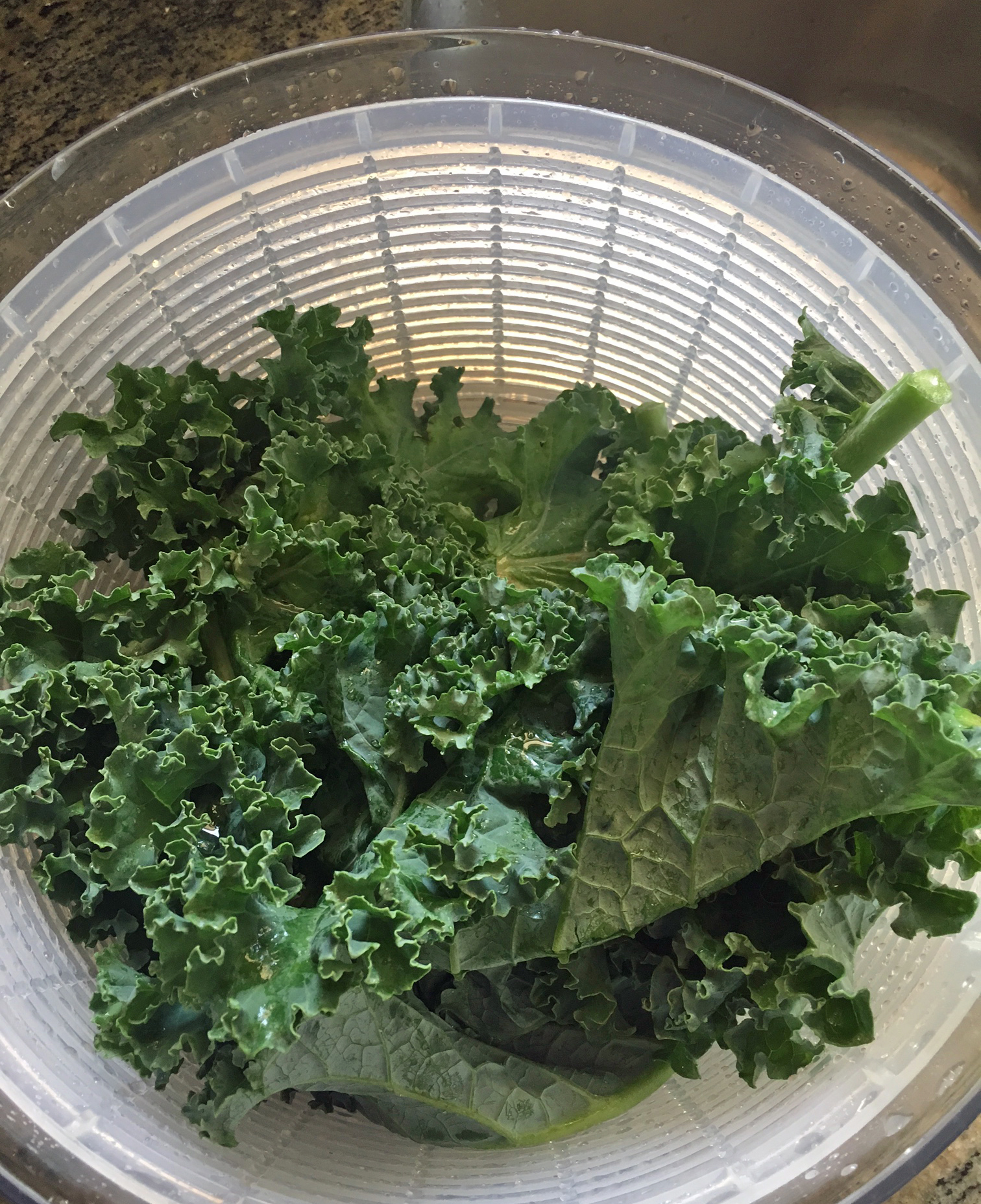 The Perfect Kale Chip Recipe: Guest CSA Member Recipe | Red Wagon Farm