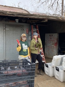 Kai and Jenny getting your CSA shares packed up for this afternoon.